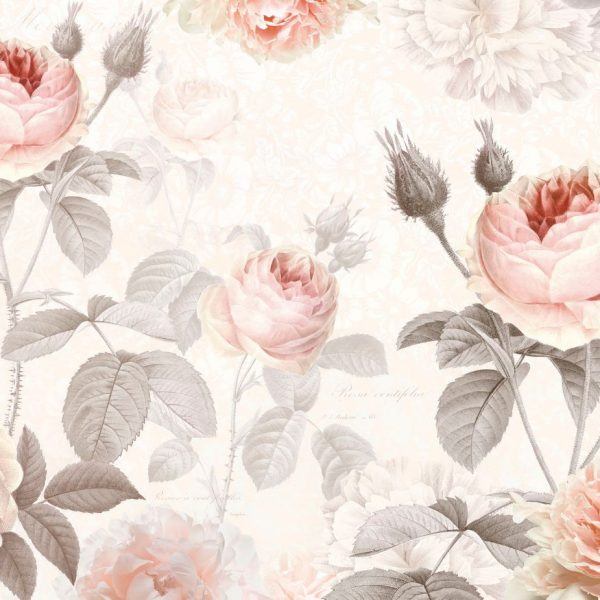 Fotobehang rozen